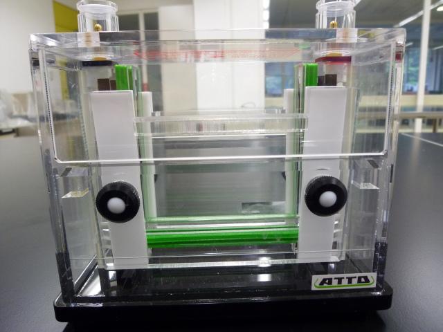 電気泳動槽 Slab Electrophoresis Chamber(ミニスラブサイズゲル用)