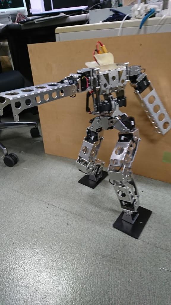 robo-one (2).jpg